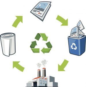 The Paper Experts - paper manufacturing and recycling